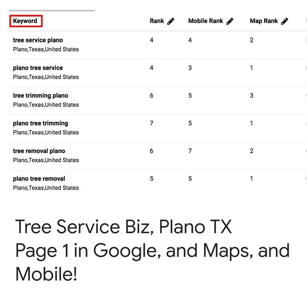 Tree service in Plano, TX, ranking results