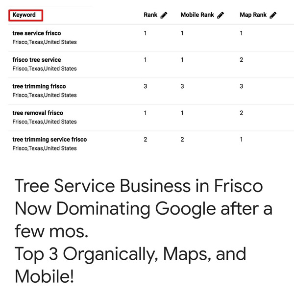 Tree service in Frisco, TX, ranking results