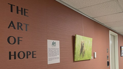 Huntsville Hospital's newest exhibit helps reduce stress during coronavirus crisis