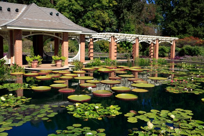 Huntsville Botanical Garden extending hours two nights a week, inviting those perfect pooches
