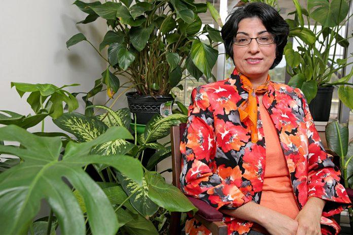 Bloomberg American Health Initiative selects Dr. Amiri as Fellow