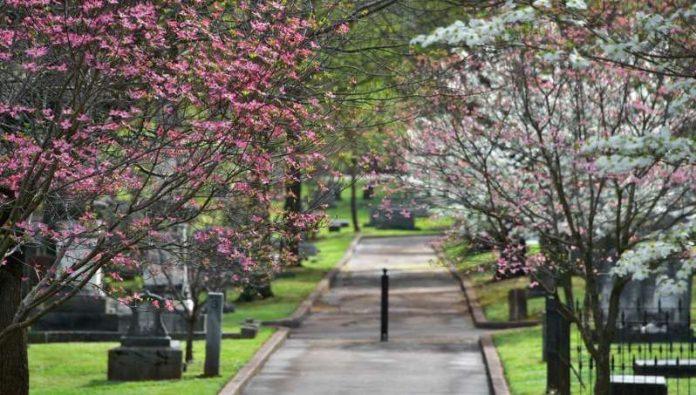 Huntsville city council: Move Confederate monument to historic Maple Hill Cemetery
