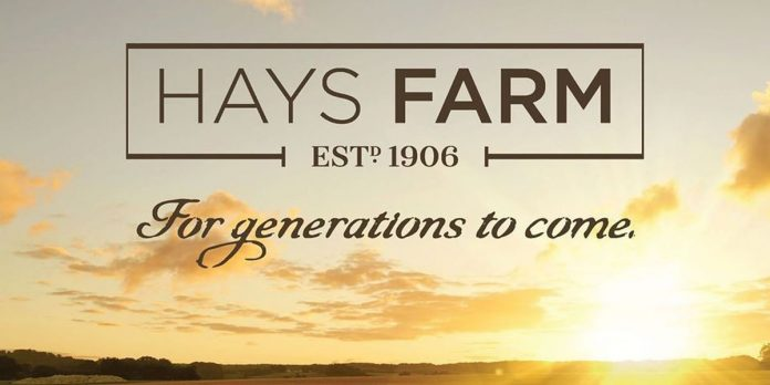The Market at Hays Farm launches new development in South Huntsville