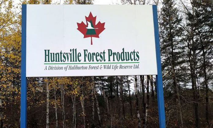 Haliburton Forest acquires Huntsville sawmill from Rayonier in 2020
