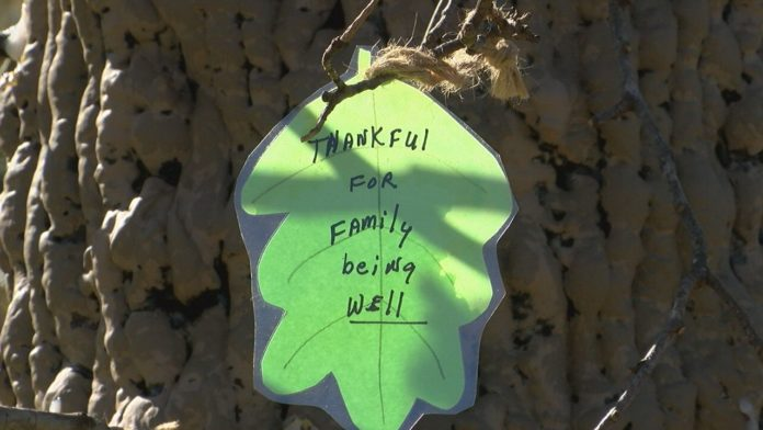 Huntsville community group creates Thankful Tree