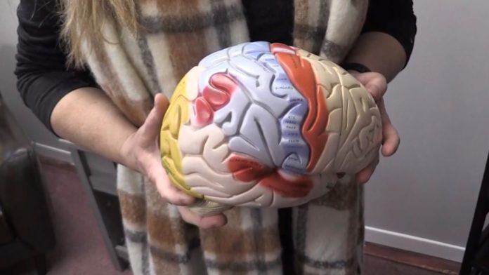 'I thought I was being pranked': Huntsville brain injury expert appointed to Order of Ontario